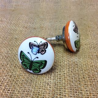 Knob Butterfly